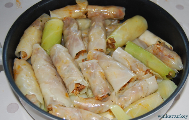 Rollitos de repollo