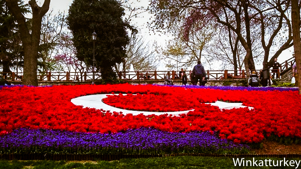 Tulips Istanbul 2014